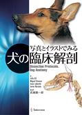 写真とイラストでみる 犬の臨床解剖+図解 猫の解剖アトラス 2巻セット立ち読み